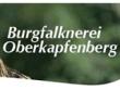 logo Burgfalknerei Oberkapfenberg
