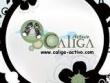 logo Caliga Activo