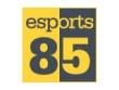 logo Esports 85