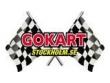 logo Gokart Stockholm