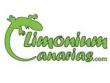 logo Limonium Canarias