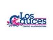 logo Los Cauces Centro Multiaventura