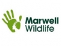 logo Marwell Wildlife