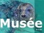 logo Musée De La Mer