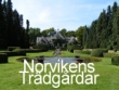 logo Norvikens Trädgårdar