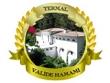 logo Termal Valide Hamamı