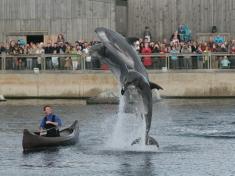Zoo Harderwijk