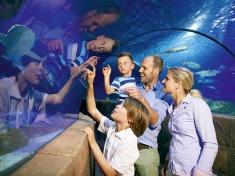 Aquarium Hannover (stad)