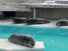 Zoo Mönchengladbach
