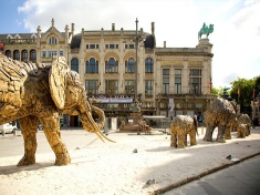 Zoo Antwerpen Belgien