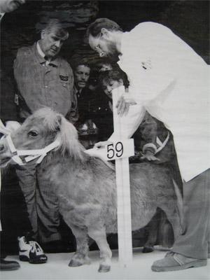 Attractiepark Slagharen - Geschiedenis - Shetland Pony