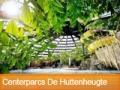 Boek nu bij Center Parcs De Huttenheugte en profiteer van online korting!