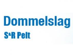 logo Dommelslag
