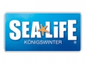 Spare bis zu 70% auf Aquarium Tickets!