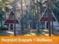 Bekijk nu Roompot Bospark 't Wolfsven aanbiedingen!