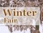 logo Winterfair Hardenberg