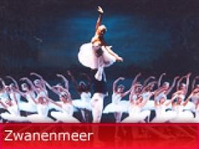logo Zwanenmeer