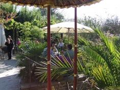 Tuin Millingen aan de Rijn