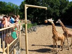 Zoo Rhenen