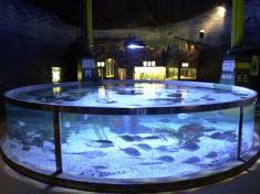Aquarium Oberhausen