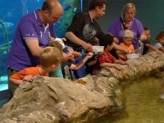 Aquarium Bergen aan Zee